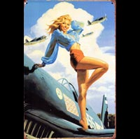 PINUP WINGS US AIR FORCE